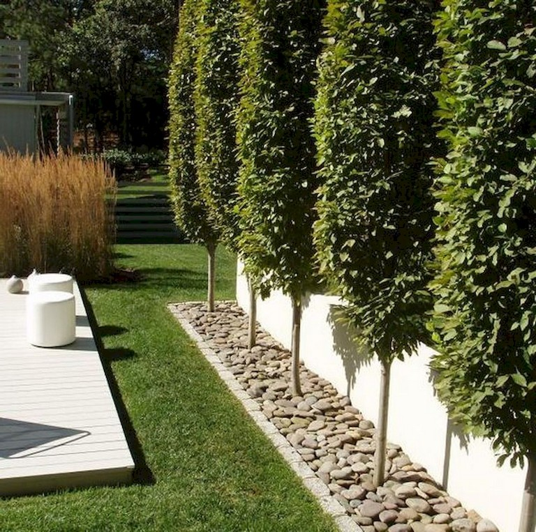 73+ Simple Backyard Privacy Fence Design Ideas